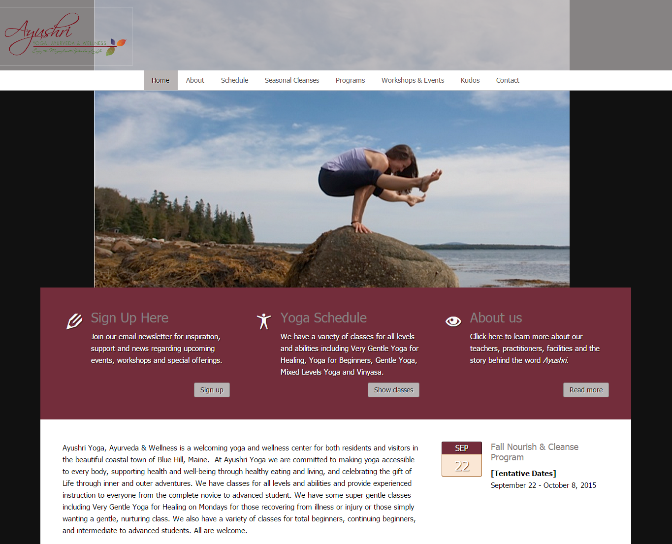 ayushri yoga website redesign